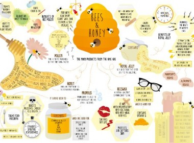 health-benefits-of-honey_5171a412bad29