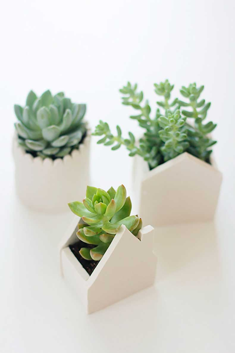 Create-adorable-succulent-planters-handmade-clay-pots