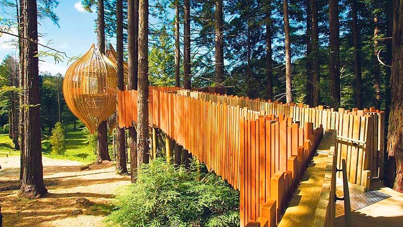Redwoods-Tree-House-Auckland-New-Zealand